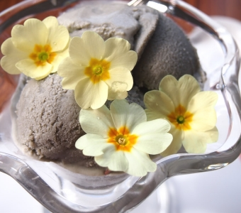 Liquorice ice cream with primroses