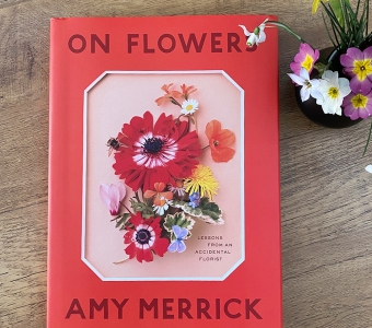 On Flowers by Amy Merrick