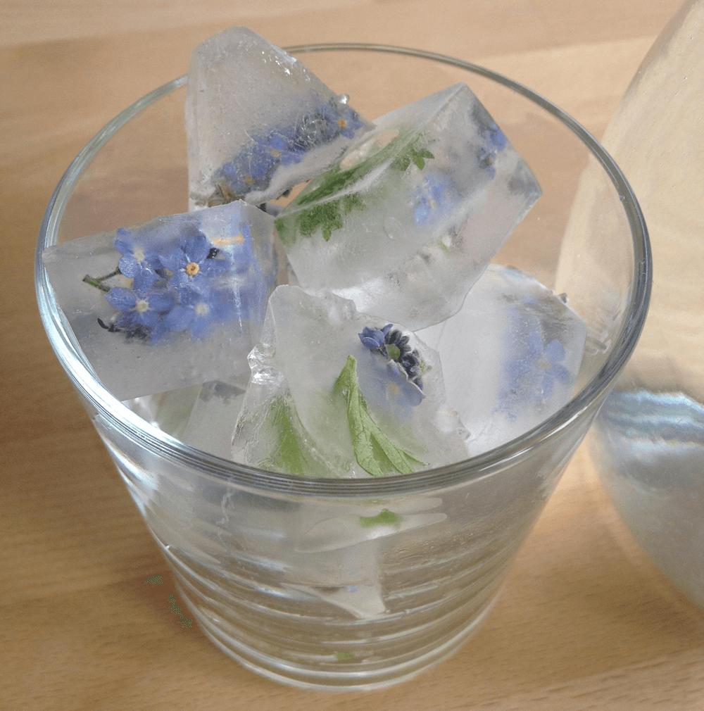 Edible flower ice in drinks