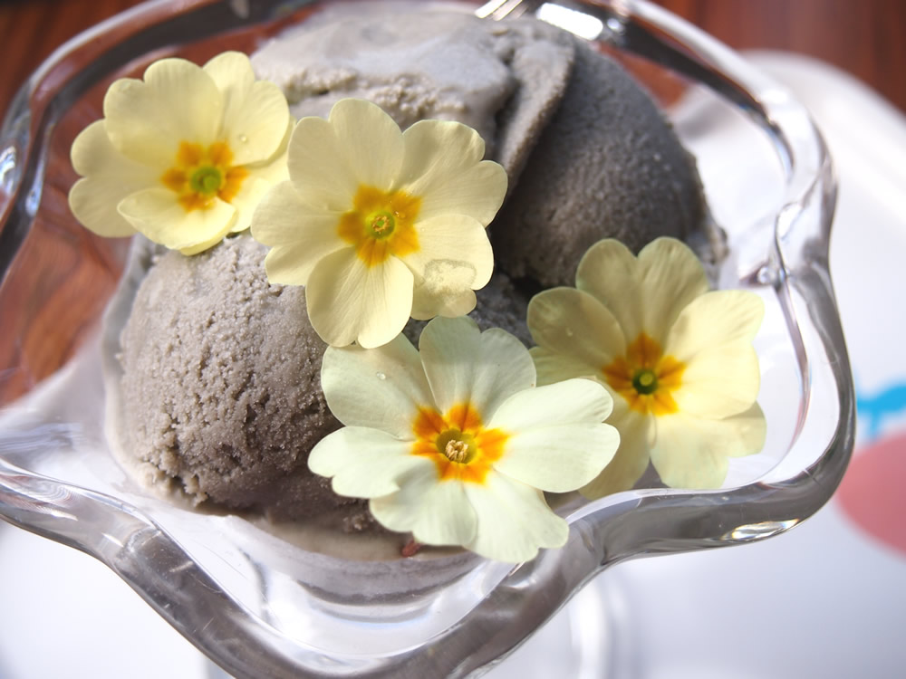 Edible primrose flowers and ice cream