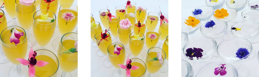 Edible flowers used in Cocktails at The Walled Garden Beeston Fields Nottingham