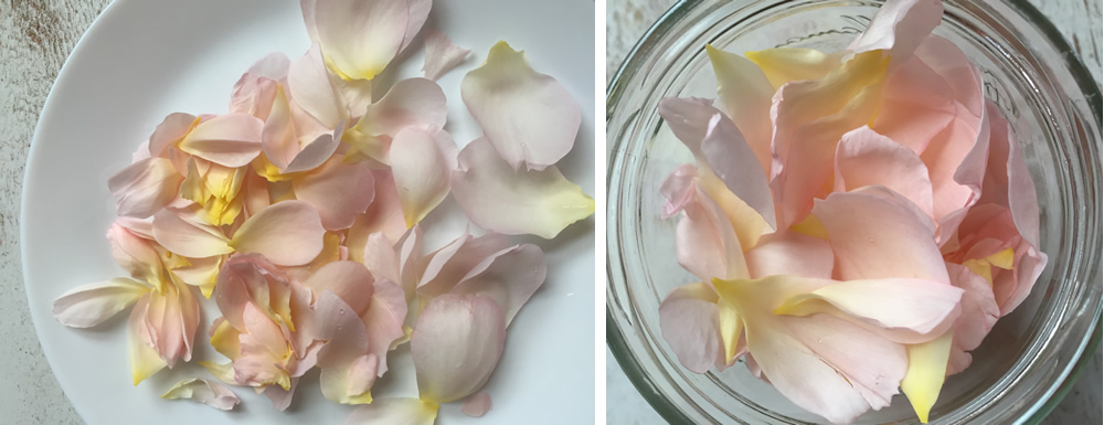 Edible rose petals for rose gin