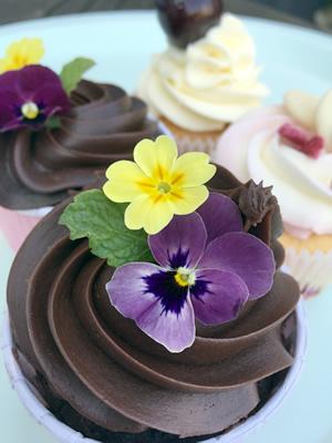 A vegan chocolate cupcake with edible flowers