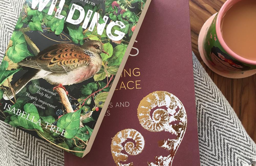 Books, blankets and tea