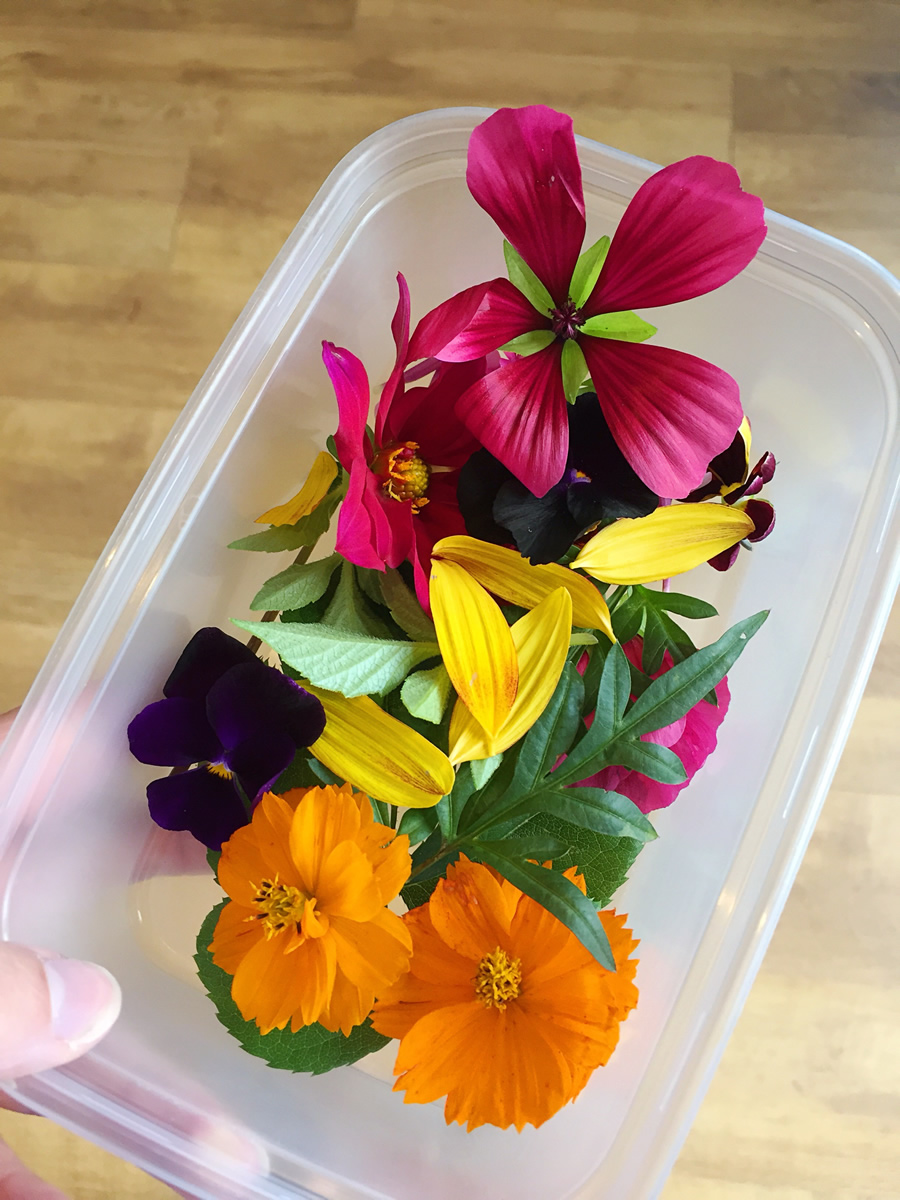 Selection of flowers used for flower pounded top