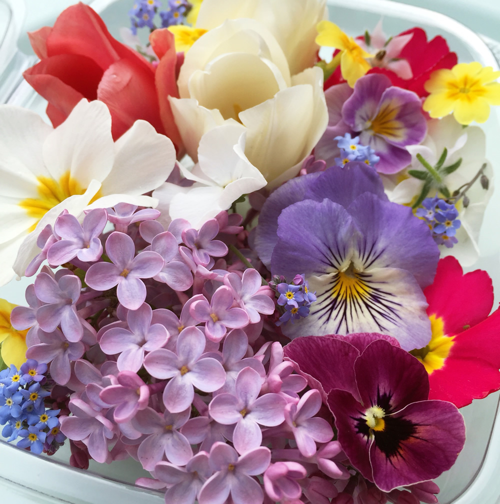 Mixed punnet of spring edible flowers