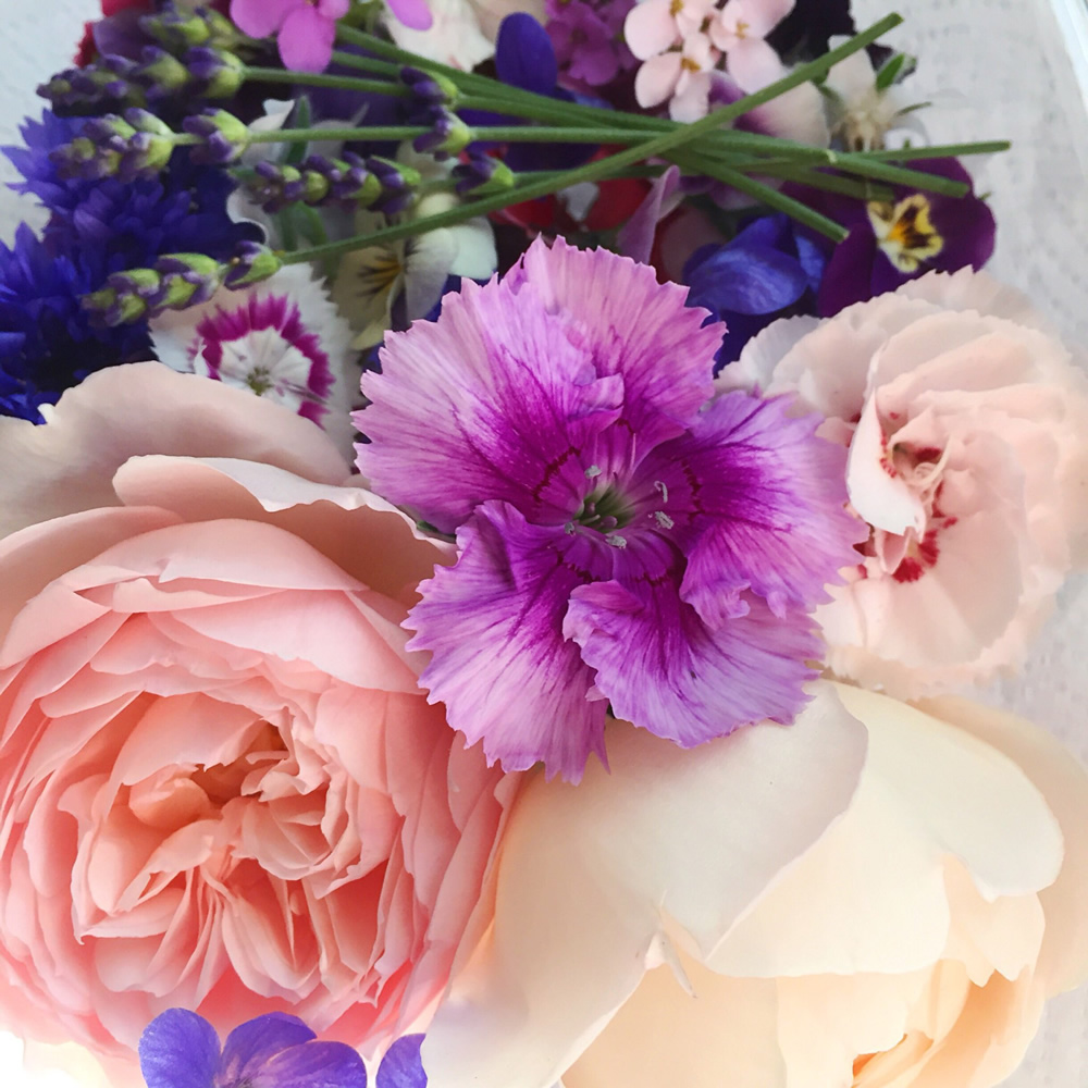Edible roses and other edible flowers from The Flower Deli