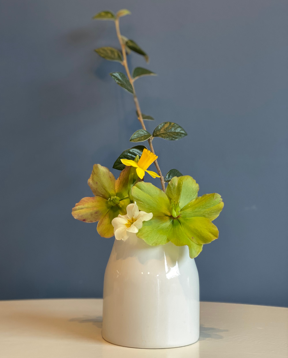 Small flower arrangement with hellebores and cotoneaster