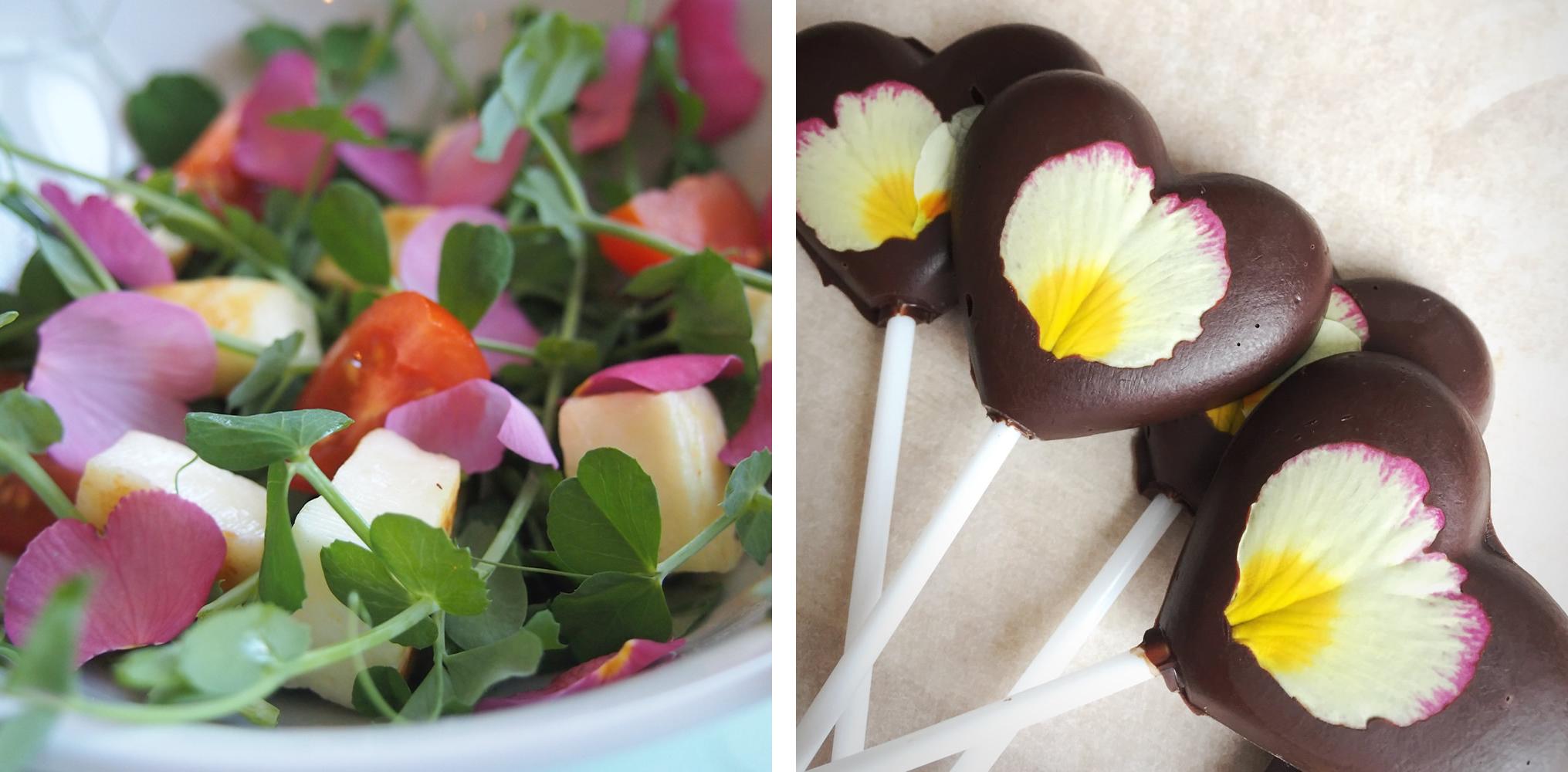 Salad with primrose petals and lollipops with primrose petals