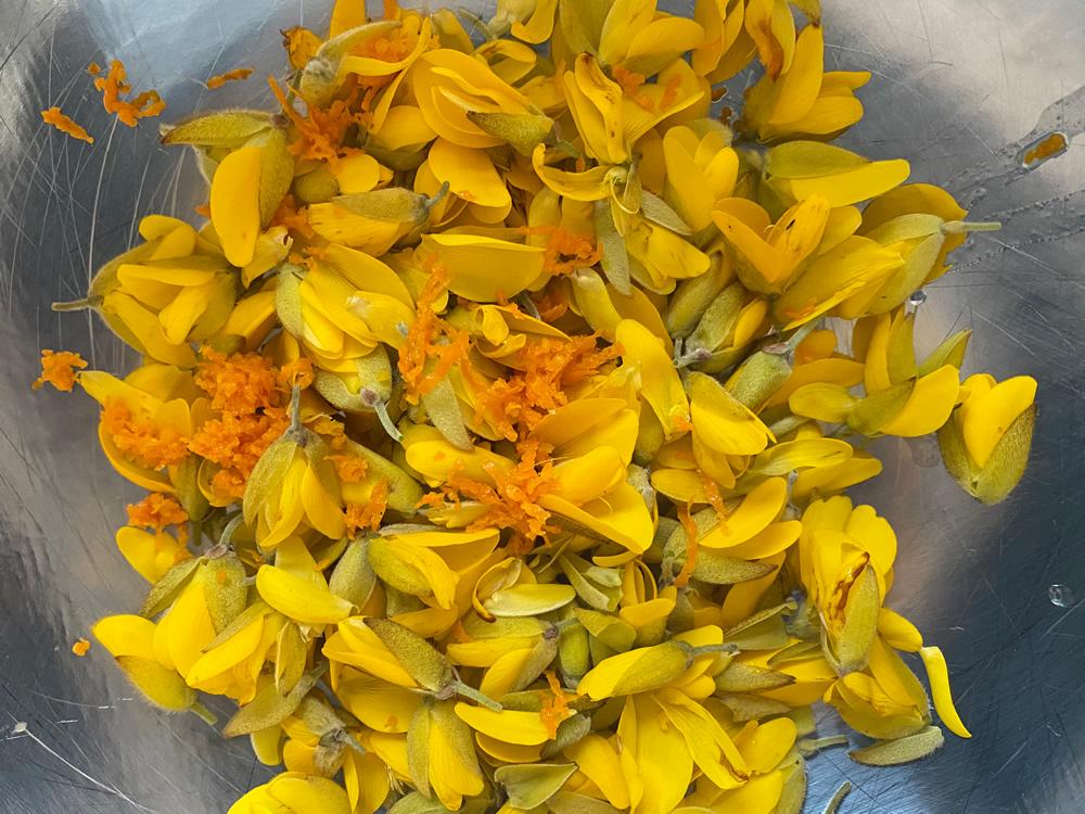 Gorse flowers and orange zest