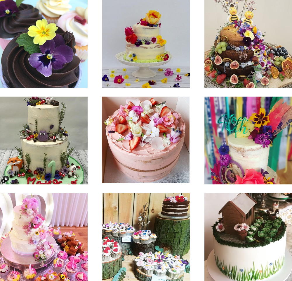 Edible flowers cakes from 2019