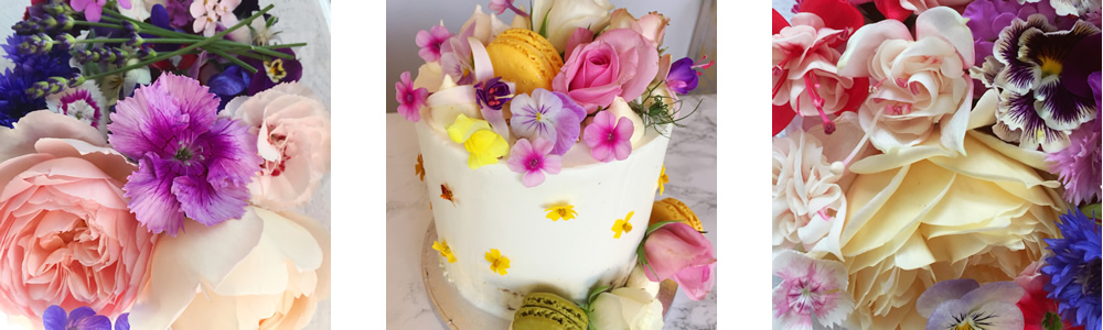 Edible flowers in June and flower cake