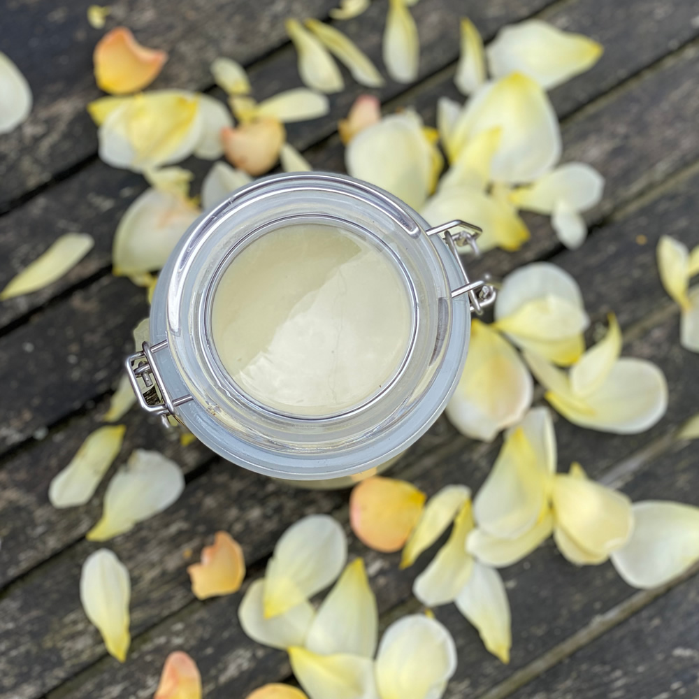 A jar of hand salve surrounded by rose petals from above